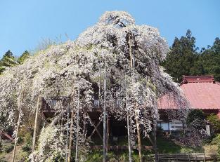 Jitokuji Temple
