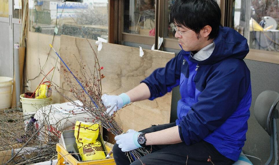 切り出した枝を結束する様子。「量があるので、丁寧かつ早い作業を心がけています」と晃治さん。