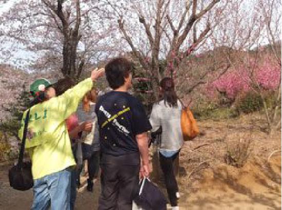 花見山公園でのガイドの様子